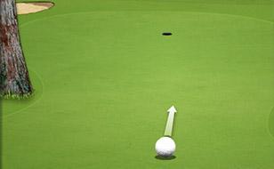 Jeu Active Golf