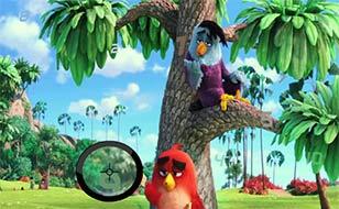 Jeu Angry birds - Chiffres cachés