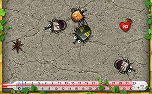 Jeu Bugs in love