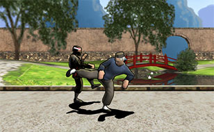 Jeu Dragon Fist 3D