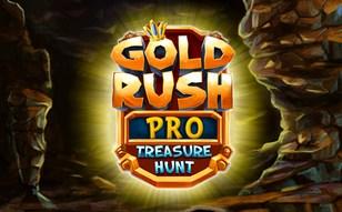 Jeu Gold Rush 2 Pro