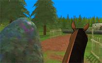Jeu Saut d'obstacle à cheval