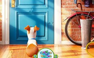 Jeu The Secret Life of Pets - Chiffres cachés