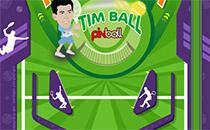 Jeu TimBall